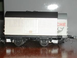 DSCN5139